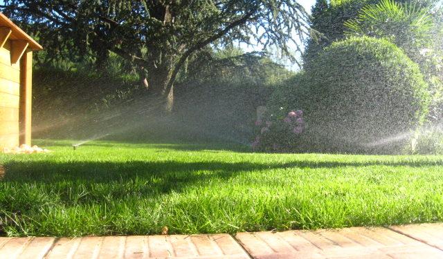 Arrosage pelouse jardin particulier