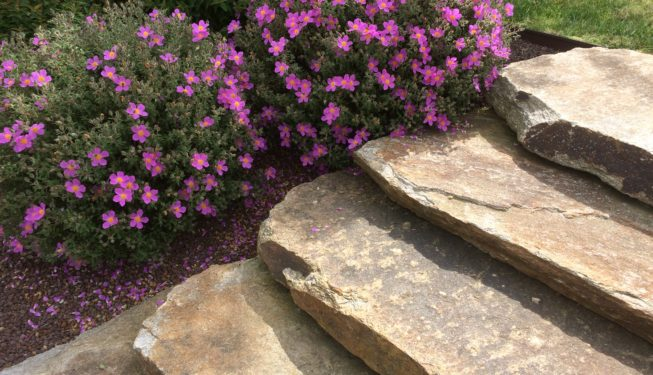 Création escalier dalle gneiss du Carroux
